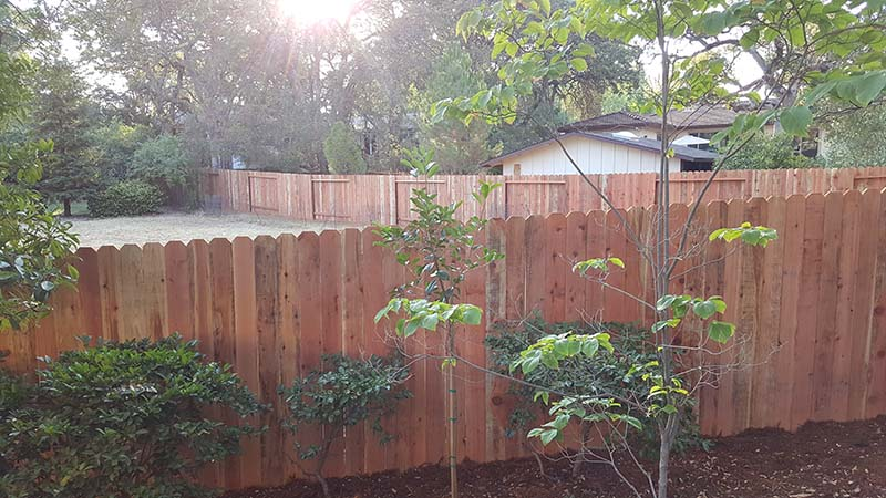 Redwood Dog Ear Fence – 8