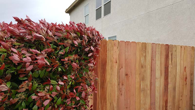 Redwood Dog Ear Fence – 9